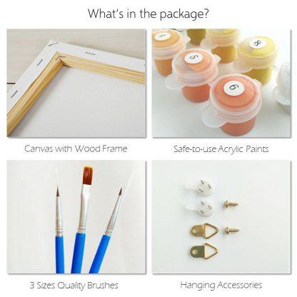 Premium/ Classic kits