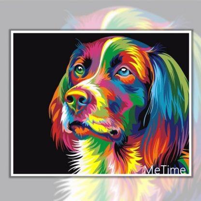Colourful Dog