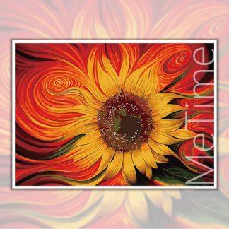 Firey sunflower